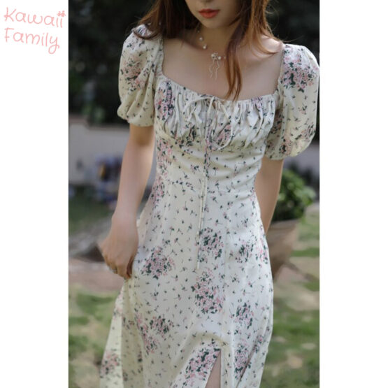 Chiffon Vintage Dress